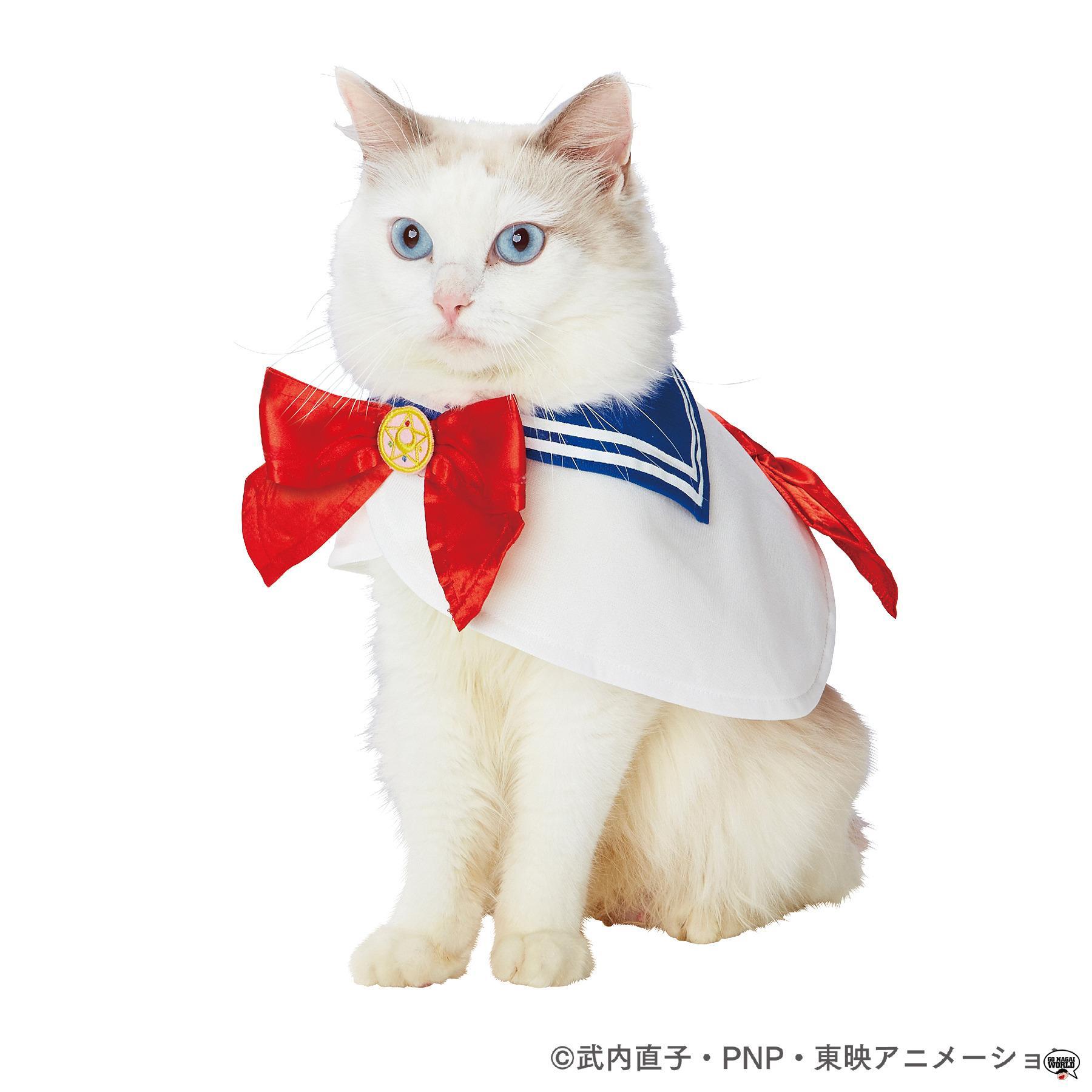 Super Sayan Shiba E Sailor Moon Kitty Cani E Gatti In Cosplay Con