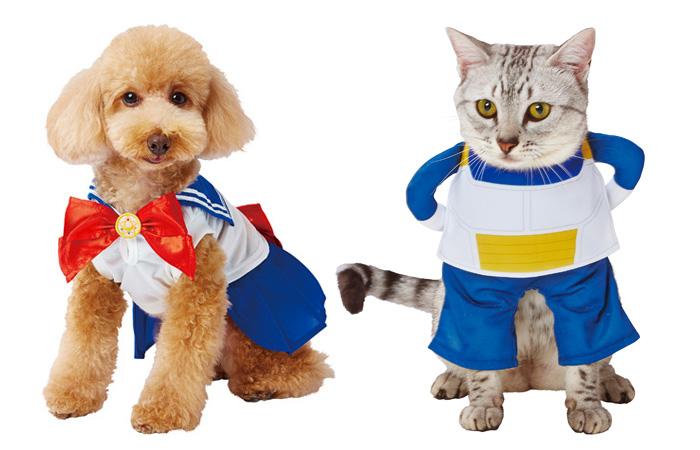 Super Sayan Shiba e Sailor Moon Kitty: cani e gatti in ...