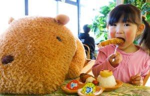 Capibara e panda rossi di peluche per mantenere la distanza sociale: accade in Giappone nello zoo di Shizuoka
